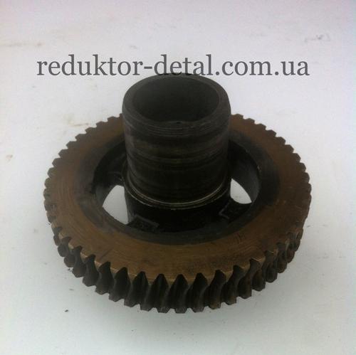 Колесо червячное РЧУ-80-25-56